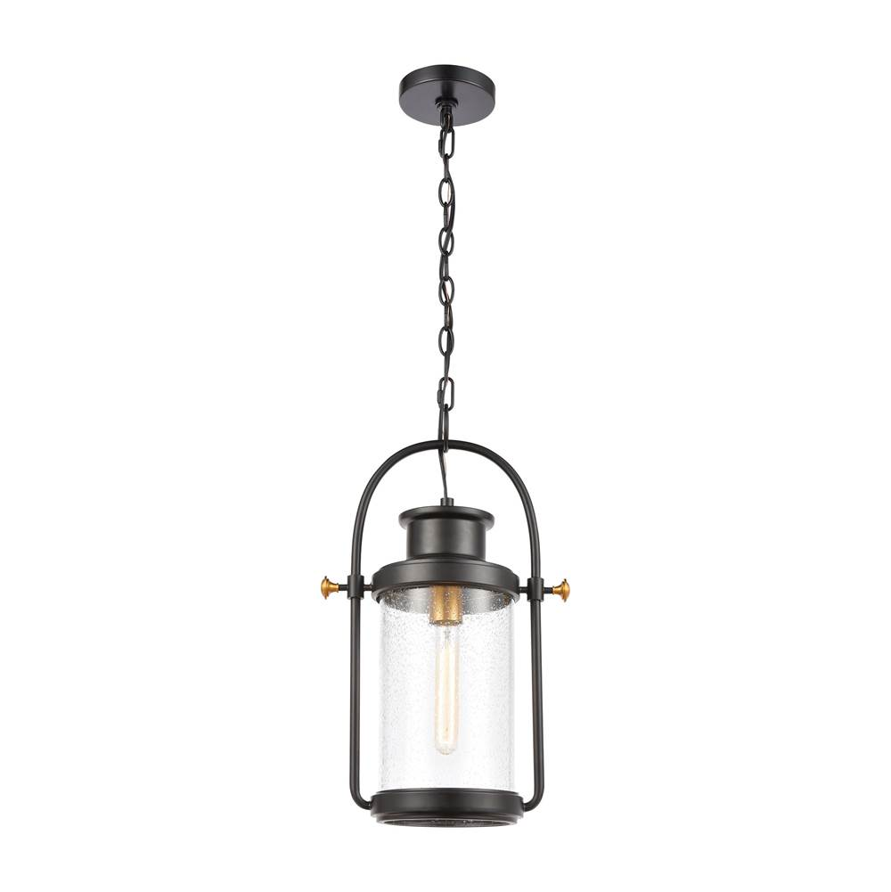 Elk Lighting Wexford 1-Light Hanging in Matte Black with Seedy Glass